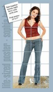 Poster Sophia Bush